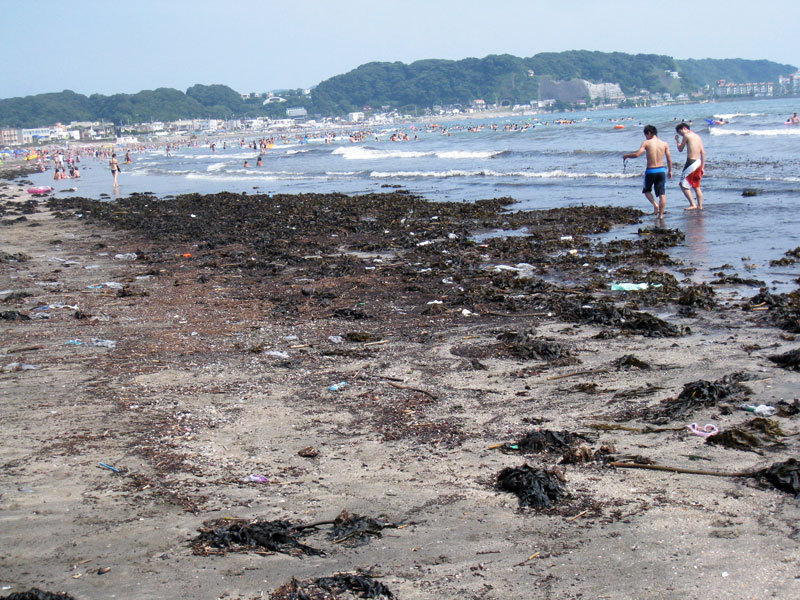 $オーラソーマ総合情報サイト・ブログ-夏の由比ヶ浜海岸・4