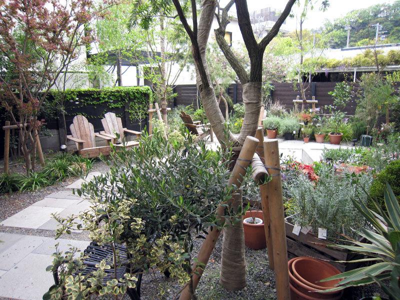 $オーラソーマ 総合情報サイト ブログ-Garden House3