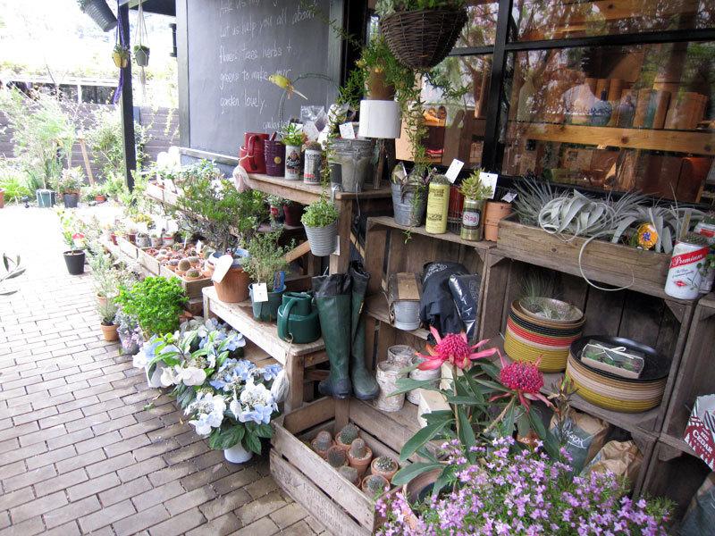 $オーラソーマ 総合情報サイト ブログ-Garden House8