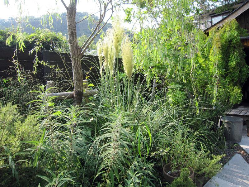 $オーラソーマ 総合情報サイト ブログ-Garden House23